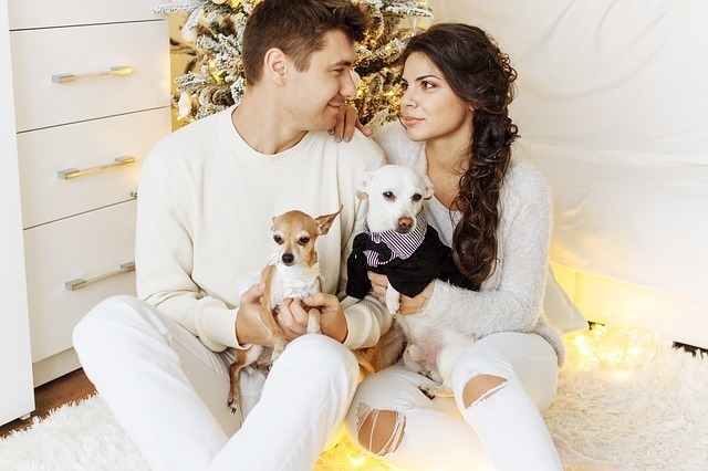 christmas gifts for dogs couple