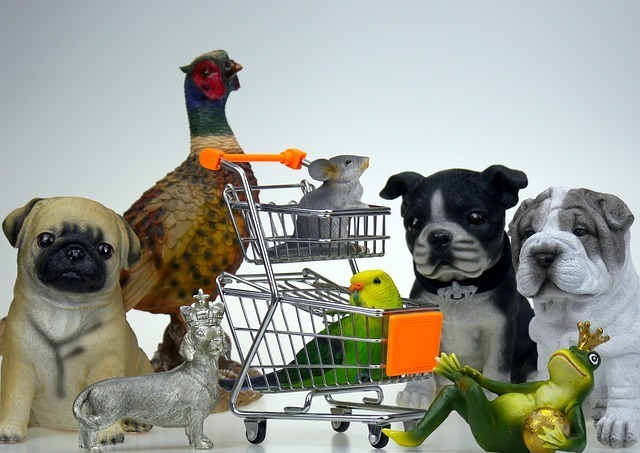 how dog food is made